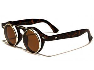 Roliga annorlunda glasögon Flipi